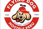 Flying Dog Hostel Arequipa
